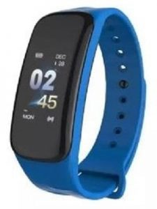 WEARFIT Fitness Band